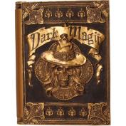 28cm x 43cm x 6.4cm Dark Magic Animated Book Prop