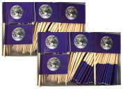 Two Boxes Earth (NASA World Photograph) Toothpick Flags, 200 Small Earth Day Flag Toothpicks or Cocktail Picks