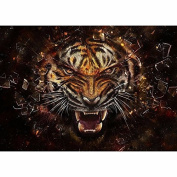 5D DIY Diamond Painting,NACOLA Rhinestone Pictures Of Crystals Embroidery Kits Arts Crafts & Sewing Cross Stitch-Tiger 1