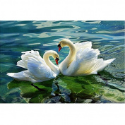 5D DIY Diamond Painting,NACOLA Rhinestone Pictures Of Crystals Embroidery Kits Arts Crafts & Sewing Cross Stitch-Swan