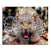 5D DIY Diamond Painting,NACOLA Rhinestone Pictures Of Crystals Embroidery Kits Arts Crafts & Sewing Cross Stitch-Leopard