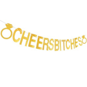 """""""CHEERS BITCHES"""" Banner, Gold Glitter Party Hanging Letter Banner Pennant with 2 Diamond Pattern and String"""