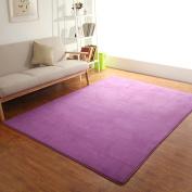 Hyun times Carpet coral European living room coffee table mat sofa bedroom full floor mattress mats