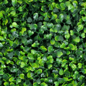 Porpora Artificial Hedge Plant, Greenery Panels Suitable for Both Outdoor or Indoor use, Garden, Backyard and/or Home Decorations, Boxwood 50cm x 50cm (12 pack) by e-Joy