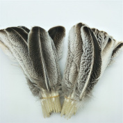 WAKEACE Turkey Feathers 10 Pieces Natural Colour Discount Wholesale DIY Decoration Collection Purification Energy Feathers
