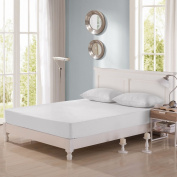 Dream Signature Collection Bamboo Terry Mattress Protector, Cal King