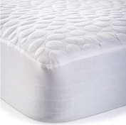 Dream Signature Collection Pebbletex 100% Organic Cotton XL Mattress Protector, Twin X-Large
