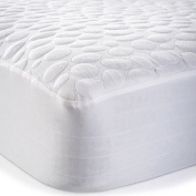 Dream Signature Collection Pebbletex Tencel XL Mattress Protector, Twin X-Large
