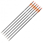 Ruixunte X6 80CM 7mm Training Archery Fibreglass Arrows F Recurve Bow & Long Bow