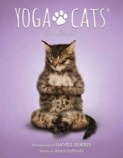 Yoga Cats Tarot Cards by Borris & DeNicola