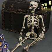 THEE Halloween Scary Skull Bone Life Size Realistic Party Human Skeleton Decor