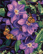 LB Acrylic Paint by Numbers Kits for Adults and Kids, 41cm by 50cm Preprinted Canvas, no Frame, Butterfly on Purple Flowers