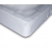 Alwyn Home Waterproof Mattress Protector