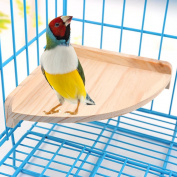 Bird Perch Platform Stand Wood for Small Animals Parrot Parakeet Conure Cockatiel Budgie Gerbil Rat Mouse Chinchilla Hamster Cage Accessories Exercise Toys Sector
