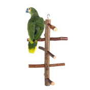 Parrot Birds Perches Paw Grinding Toy Cage Stand Toy Hanging Wooden Activity Branches Climbing Stairs For Budgies Canaries Cockatiels Cockatoo Parakeet