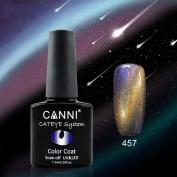 DZT1968 12 Colours women #51024 7.3ml nail Chameleon Sequins cat design Glue UV UV / LED