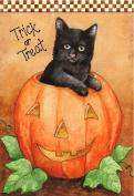 Trick or Treat Black Cat