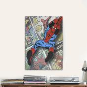 Spider-Man Canvas Wall Art