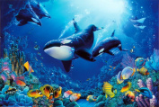 Delight of Life Underwater Scene Art Print Poster - 36x24