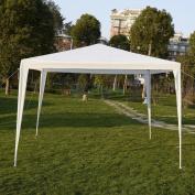 Zimtown 3mX3m party Canopy wedding Tent Waterfroof Garden Gazebo Canopy W/ Carrying Case