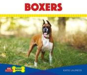 Boxers (Big Buddy Dogs)