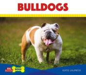 Bulldogs (Big Buddy Dogs)