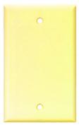 Arrow Hart 2129V-BOX Blank Standard Wall Plate, 1 Gang, 10cm - 1.3cm L X 5.1cm - 1.9cm W X 0.2cm T, Ivory