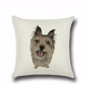 Pet Dog Pillow Cover Cartoon Pillowcases,Aritone Throw Pillow Case Square Cushion Cover Home Sofa Decor 40cm40cm