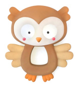 Bright Starts Naturals Rubber Teether-Owl