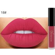 Lipstick ,Vanvler Waterproof Long Lasting Lipstick Matte Lip Gloss Makeup Lip Lingerie New
