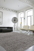 Sweet Home Stores Cosy Shag Collection Solid Shag Rug, 2.1m X 2.7m, Grey Colour