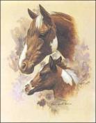 Horse Portrait II Paper Tole 3D Decoupage Craft Kit size 6x8 10631