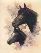 Horse Portrait III Paper Tole 3D Decoupage Craft Kit size 6x8 10632