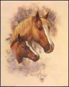 Horse Portrait IV Paper Tole 3D Decoupage Craft Kit size 6x8 10633