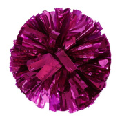FTXJ Metallic Colour Foil Cheerleader Pom Poms And Plastic Ring Cheerleading Sports Party Accessories Dance Ball