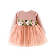 Kintaz Floral Tulle Mesh Tutu Long Sleeve Princess Dress for Toddler Baby Girl