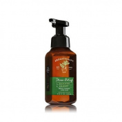 Bath & Body Works Gentle Foaming Hand Soap Eucalyptus Spearmint Stress Relief