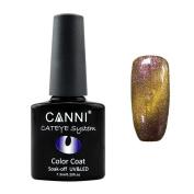 Quartly #51024 7.3ml nail cat design colour UV UV / LED Chameleon Cat eye Glue