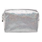 Toiletry Bag Silver Small