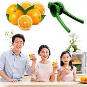 JD Million shop Kitchen Hand Held Manual Citrus Lime Lemon Fruit Juice Maker Squeezer juicer teaspoon KT0082