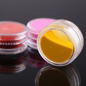 WAWO 12 Mix Colours Acrylic Powder Builder Nail Art Set