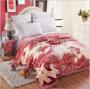 WYFC Autumn and winter gifts wedding Raschel bed blankets super soft thick double blankets