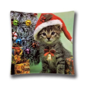 Christmas Kitten. Cats Pillowcase 41cm x 41cm inch Two Sides Comfortable Zippered Pillow Cover Cases