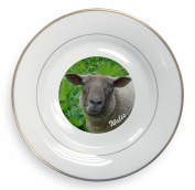 Sheep 'Wales' Wording Welsh Gift Gold Rim Plate in Gift Box Christmas Present