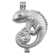 10pcs lizard Stainless Steel Tones Alloy Christmas Bead Cage Pendant Add Your Own Pearls Stones Perfume Essential Oils to Create a Scent Diffusing Locket Pendant Charms