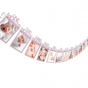 Gaddrt 12 months Baby First Year Photo Frame Bunting Banner 1-12 Month Months Photo Banner Perfect for Hanging Photos ,Pictures, Notes, Paintings Card and Memos
