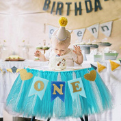DWE First Birthday Banner ,Baby Chair Flag One Year Old Birthday Hanging bunting celebrate Party Decoration For Baby Boy Girl