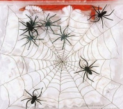Creepy Crawly Halloween Fake Spider Webb and Black Spiders Party Prop Decoration for Fancy Dress Party - Ideal for Halloween, fancy dress, kids birthdays - 5/6 Spiders in one pack with Spider Webb