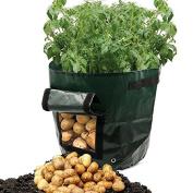 Garden Tool Kit Bag Potato Grow Bag Vegetables Planter Bags with Handles for Potato, Carrot & Onion