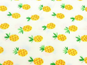 Hobby Components Fabric Fabulously Fruity Fat Quarter - Pineapple